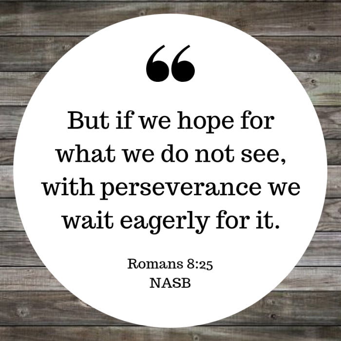 but if we hope for what we do not see, with perseverance we wait eagerly for it.-2